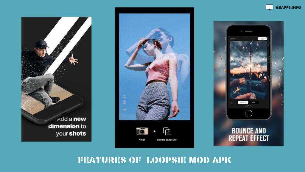 Loopsie Mod APK pro download